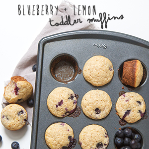 Blueberry + Lemon Toddler Muffins