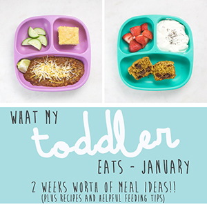 What My Toddler Eats - January