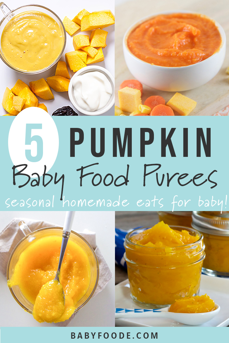 These 5 Pumpkin Baby Food Purees are a fun and healthy way for baby to enjoy the flavors of the fall season! Each of these purees are easy to make, healthy, and totally tasty! Bring baby a taste of fall with these healthy homemade pumpkin purees. #healthy #baby #babyfood #stageone #6months #babyfoodrecipes #healthykids