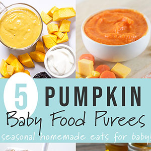 5 Pumpkin Baby Food Purees