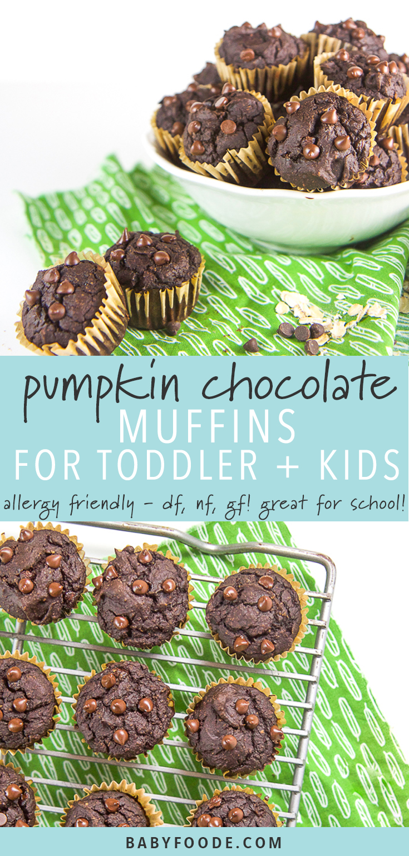 Allergy-Friendly Pumpkin Chocolate Muffins for Toddler + Kids