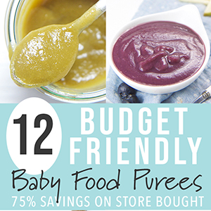 12 Budget-Friendly Homemade Baby Food Purees