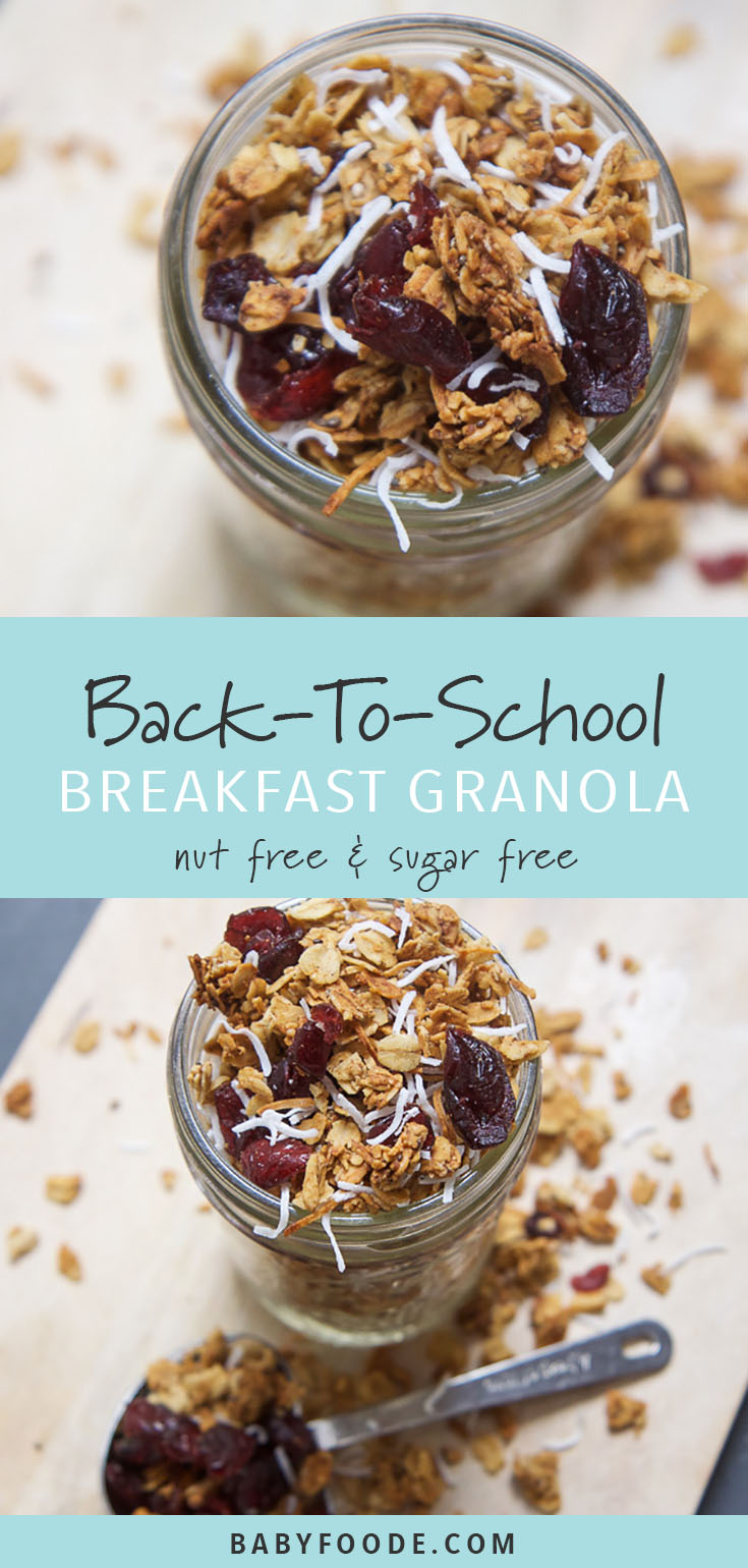 This sugar free and nut free granola is a perfect back-to-school mix of spiced crunchy oat clusters, chewy sweet cranberries and tropical shredded coconut! A great addition to any packed lunch or snack for your toddler or big kid, or a quick and healthy breakfast for an easy breezey school breakfast! #granola #nutfree #breakfast #sugarfree #snacks
