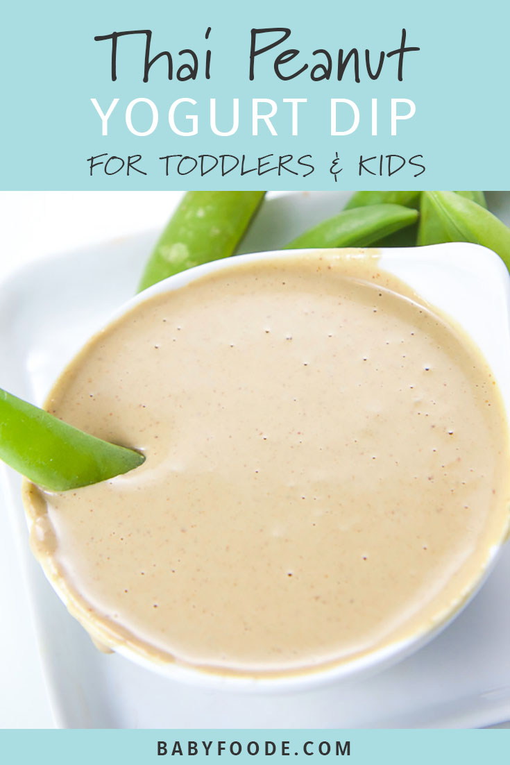 Struggling to get your toddler to eat their vegetables? I hear you. Homemade yogurt dips for veggies to the rescue! This Thai Peanut Yogurt Dip is easy, healthy, and delicious. Your toddlers and big kids will be so excited to dive in and chow down! #kidfriendly #snacks