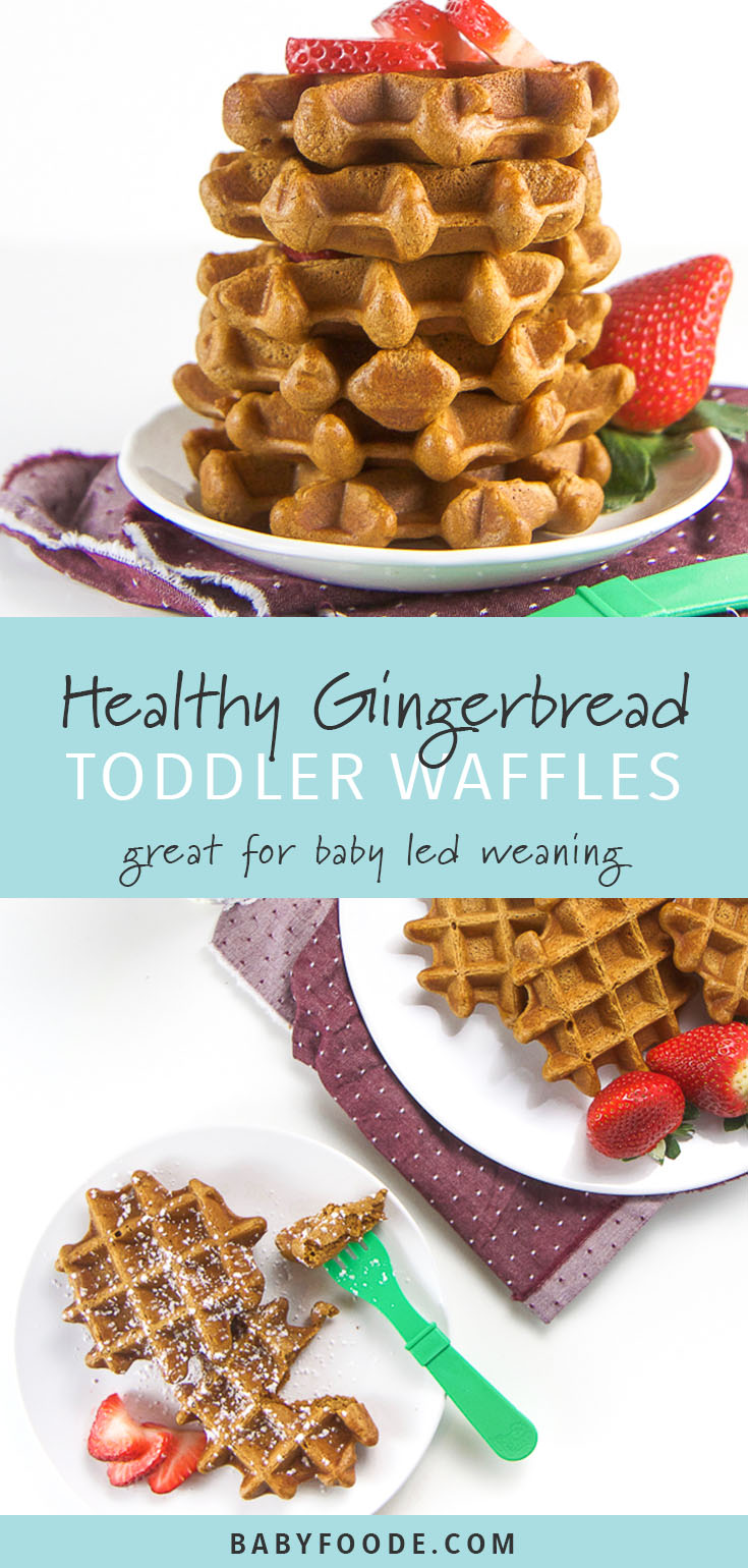 These healthy gingerbread waffles are the perfect way to introduce the rich, comforting and festive flavor of gingerbread to baby and toddler. Dairy free, sugar free, and gluten free-friendly, these healthy waffles are the perfect seasonal breakfast to share with the entire family. Kid, toddler, and baby led weaning friendly too! #gingerbread #breakfast