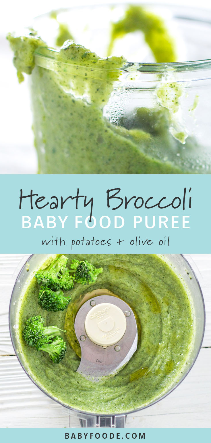 Broccoli is a great way to introduce healthy green vegetables into baby's diet. Steamed and pureed with olive oil, this broccoli puree is full of vitamins and healthy fats, and so delicious. If you're looking for an easy green starter puree for baby, this is it! #baby #broccoli