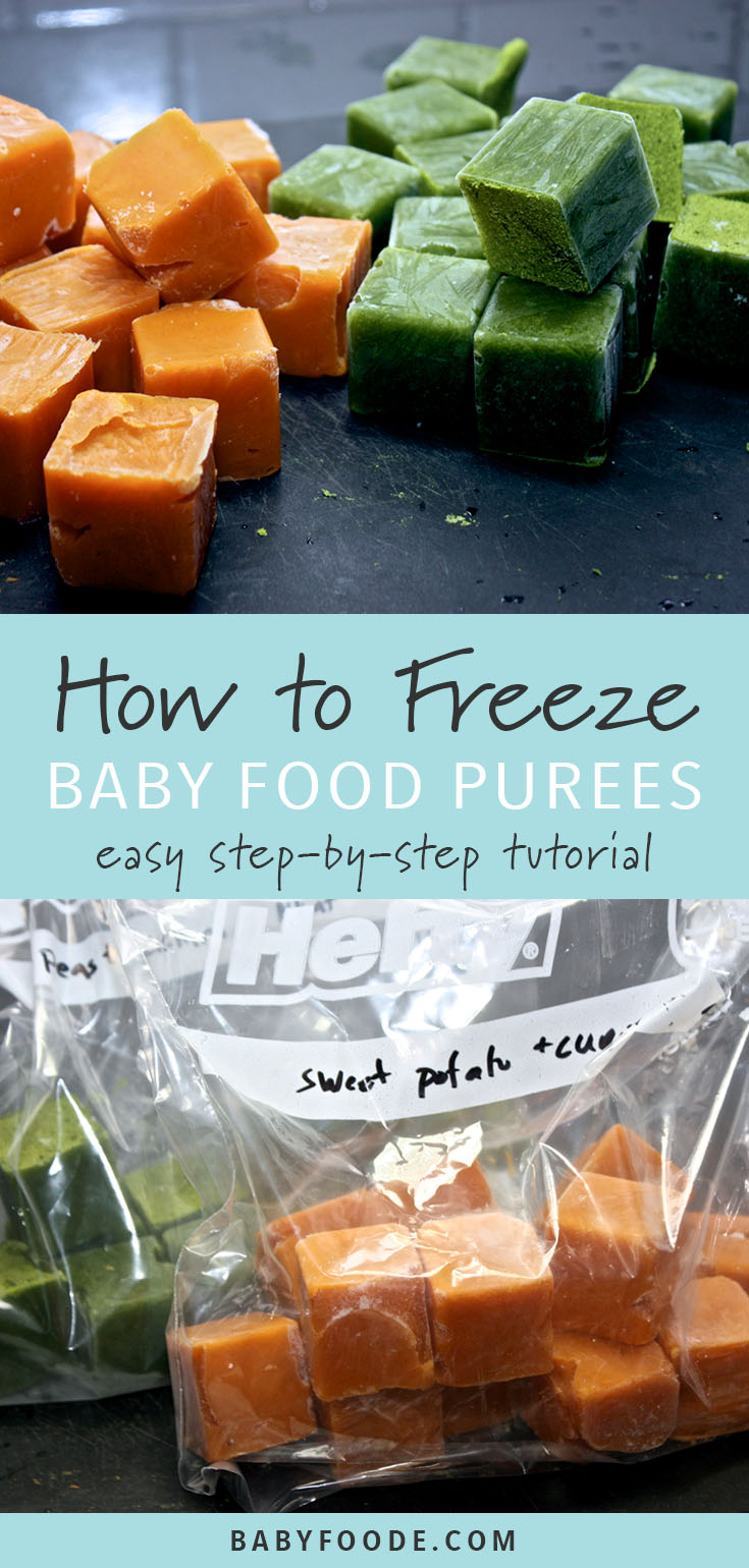 Learn everything you need to know about storing and freezing homemade baby food recipes! You need just a few simple supplies to properly freeze and store baby food. This post walks you through every thing you need to know. You'll be a pro in no time! #babyfood #frugal