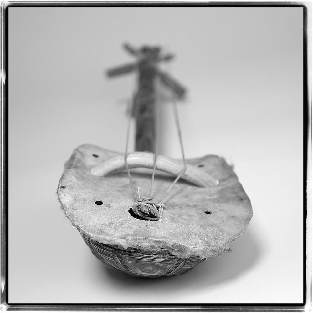 turtle lyre.jpg