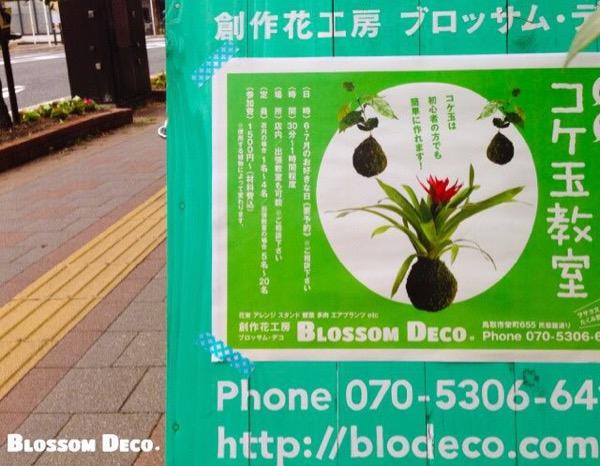 iphone-20150613135651-0.jpg