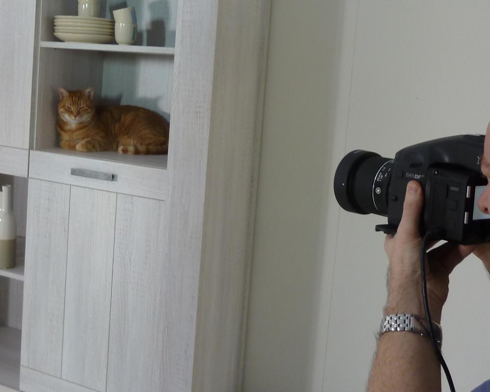 Piet Klerkx Website : Hebbes voor piet klerkx u catvertise