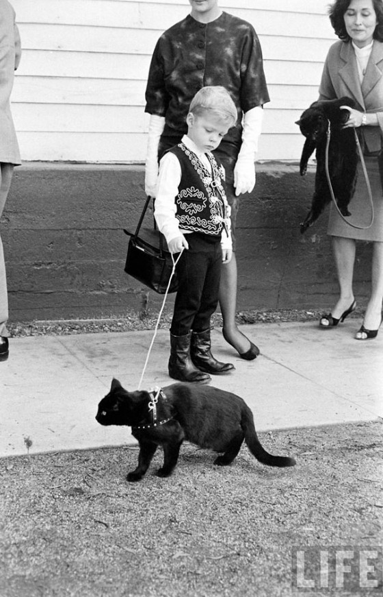 black-cat-auditions-hollywood-1961-7-560x871.jpg