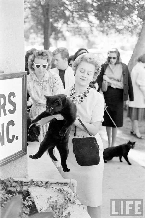 black-cat-auditions-hollywood-1961-12.jpg
