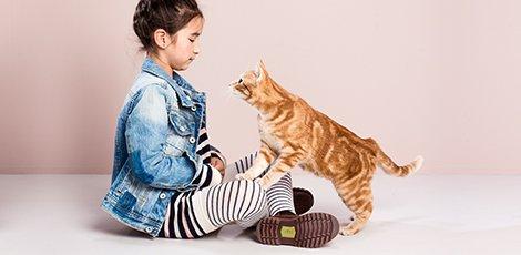 470-230-contentheader-huisdieren-wk7.jpeg