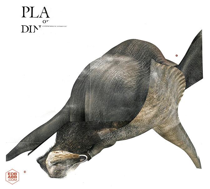 Platadino