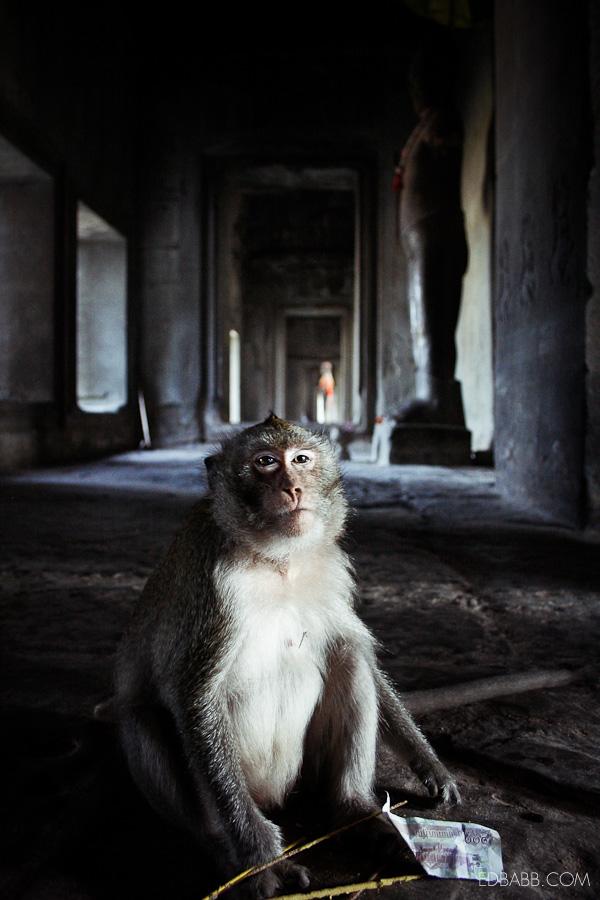EDBABB_Angkor3_013.jpg