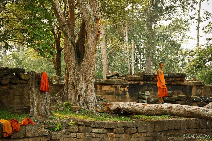 EDBABB_Angkor2_192.jpg