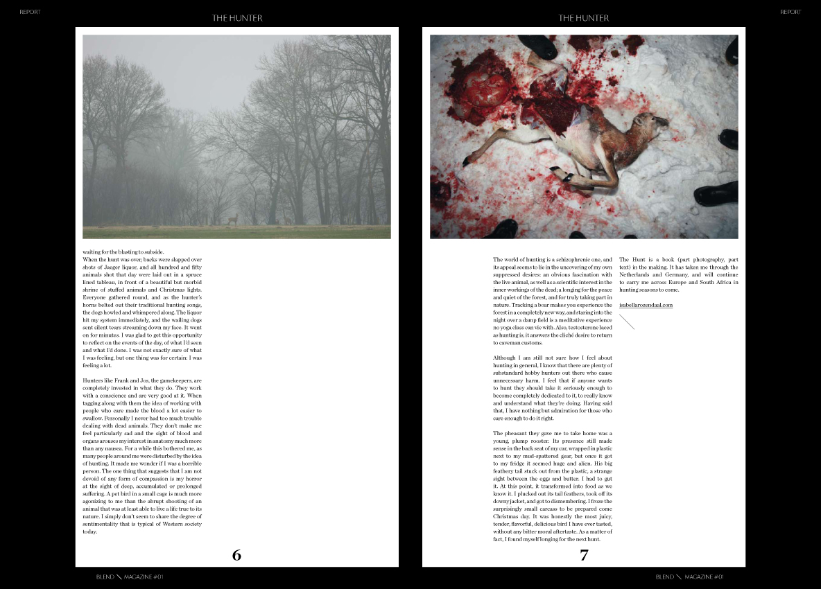blend hunter page 6 7