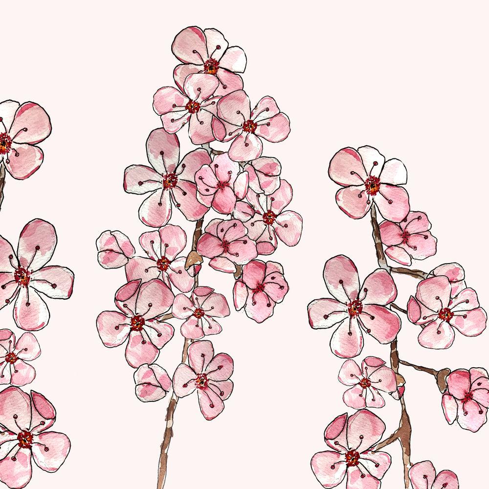 blossom_oct2017.jpg