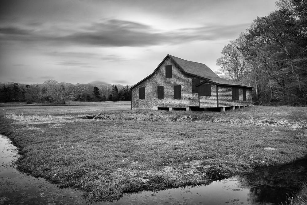 The Bog House