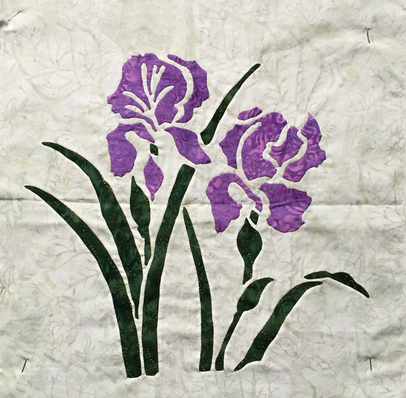 "Iris (16"" x 16"")-not yet on the website. Reverse applique stems and leaves with Applique blossoms."