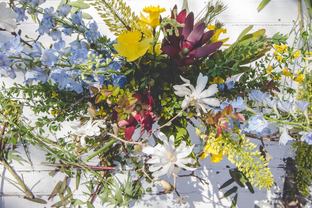 140401-flowersweeds039-2.jpg