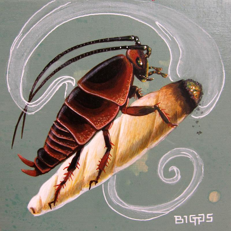roach-8x8.jpg
