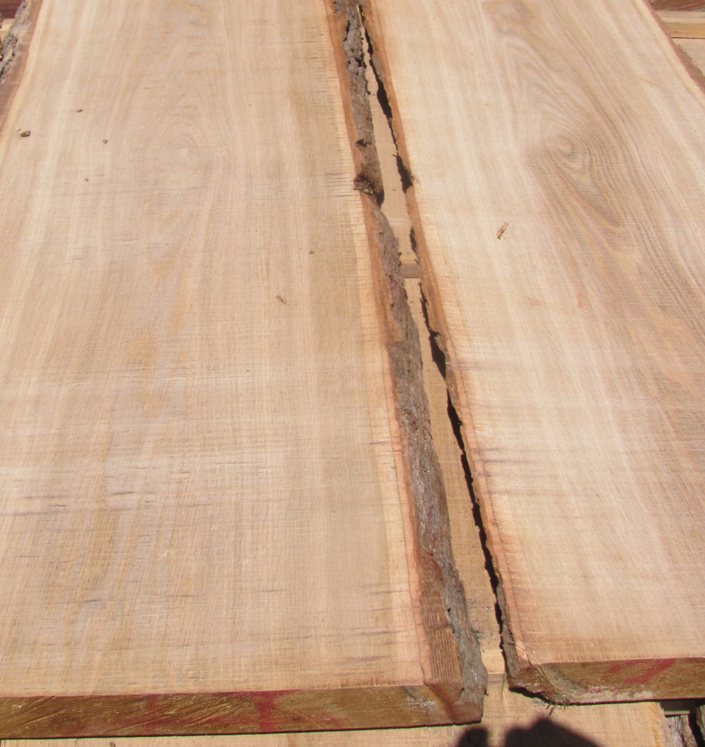 Freshly cut clear bur oak (often classified and sold as a white oak). Center of slab is more flat sawn for parts--rungs and front legs. Outer edges have nice straight grain (rift-sawn)l for back legs.