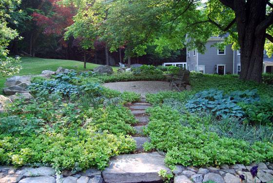DESIGNER'S GARDEN - Shade Garden