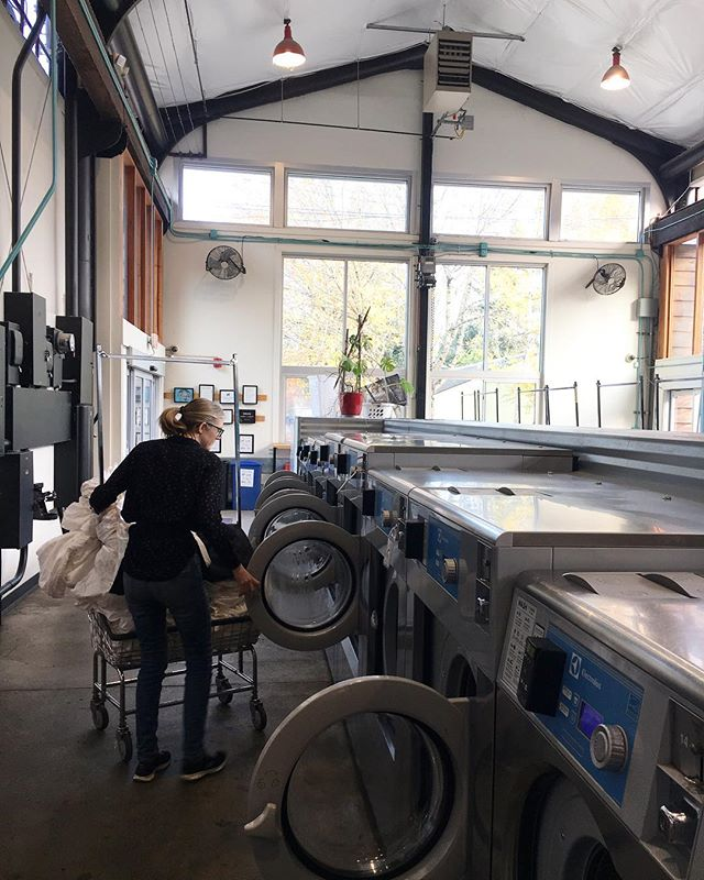 Happy National Laundry Day! 🌀❤️ #eatdrinklaundry #nationallaundryday #spinfremont