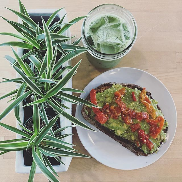 Tired: Feeling Blue 🌊 Wired: Feeling Green 🌿  We had a power lunch today with our new avocado toast, topped with 🌶 @mamalilspeppers and an iced @mizubateaco matcha latte 🍵  #eatdrinklaundry #plantbased #matcha #avocadotoast #portland