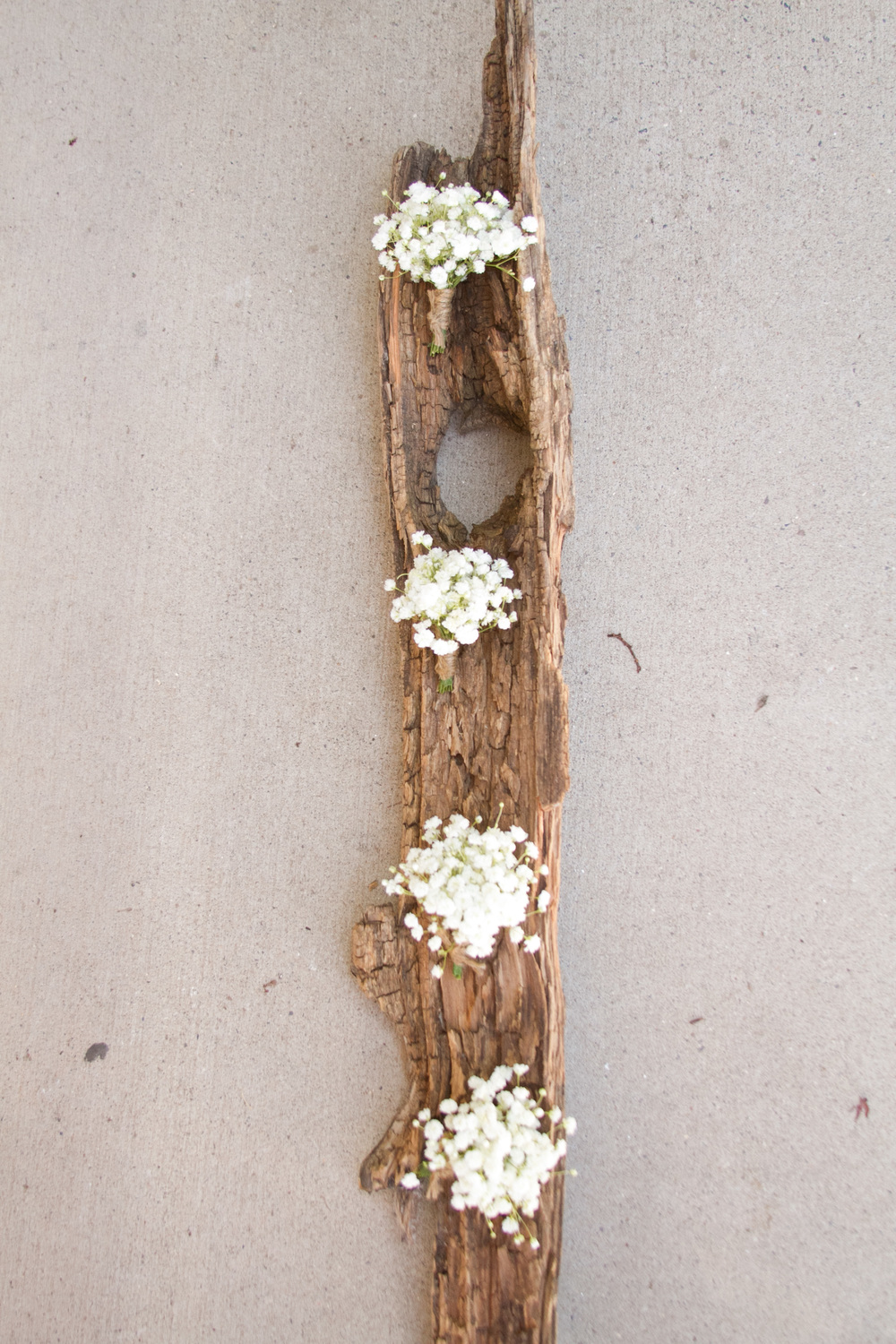 Telluride Wedding Florist, baby's breath Boutonnieres
