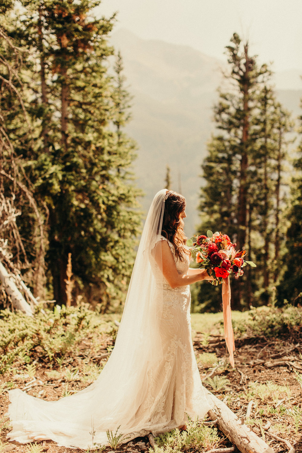 Aspen Colorado Wedding