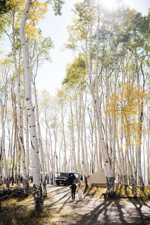 Allred's Restaurant Telluride Wedding Aspen trees