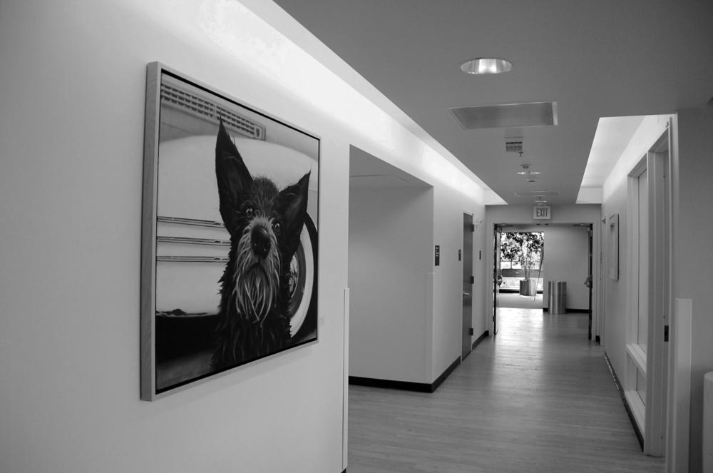 MOB hallway.jpg