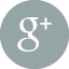 googleplusIcon.png