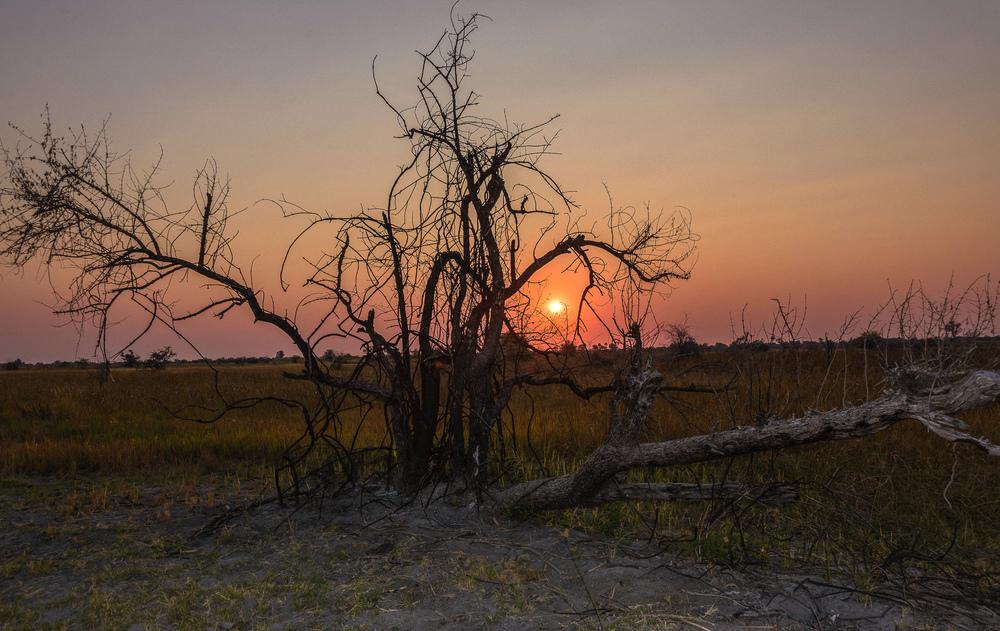 Botswana sunset 1.jpg