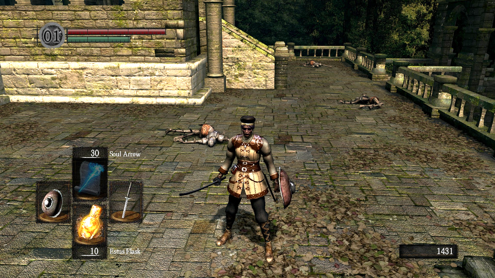 The red health bar is located in the upper-right corner. Personal screenshot from  Dark Souls , by FromSoftware, September 22, 2011.
