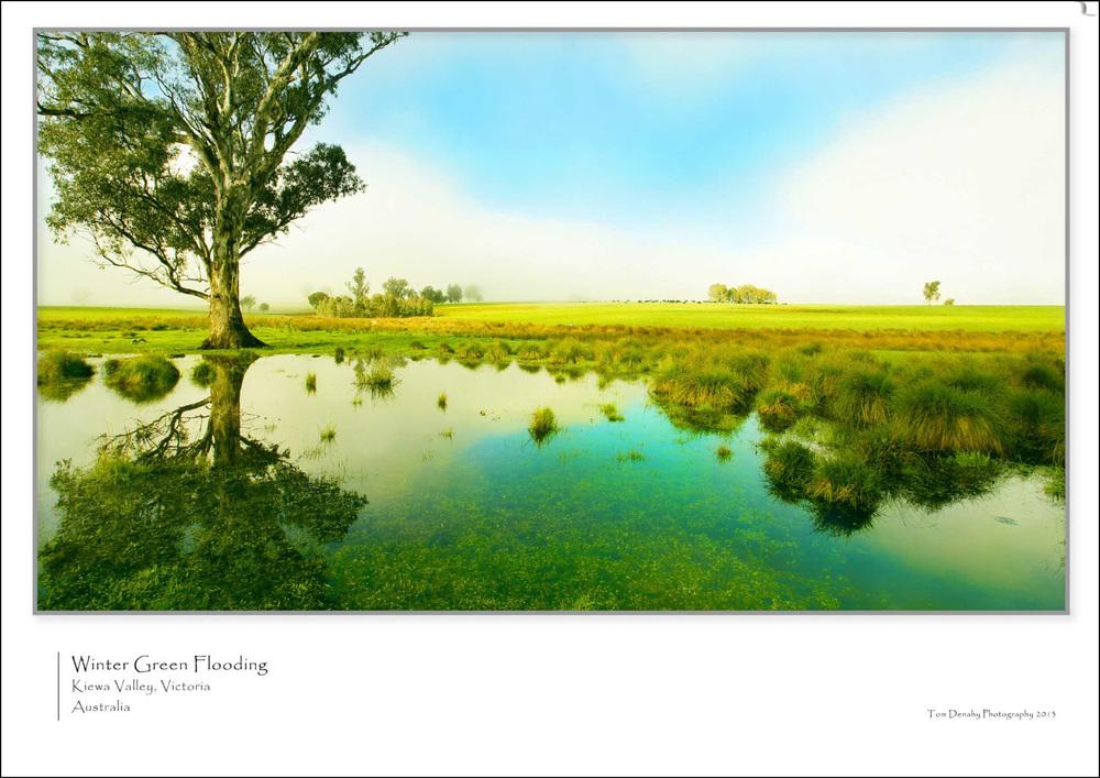 Winter Green CODE:TD051013008