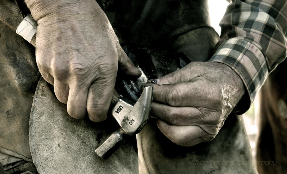 FARRIER'S HANDS - Yackandandah - AUSTRALIA   These farrier's hands are as weathered as the leather chaps he's wearing. As long as there are horses, this skill will always be a necessity.  #farrier #horseshoe