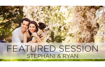 featured-stephani-ryan.png