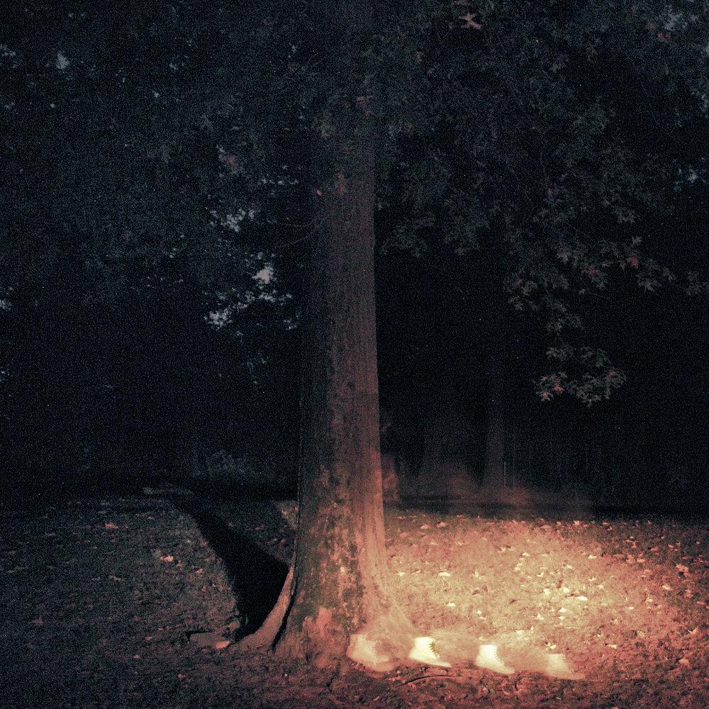 ghostwoods.jpg