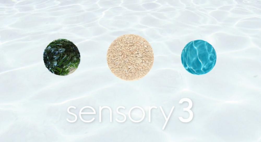 sensory3-header.jpg
