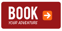 book-now_button1.png