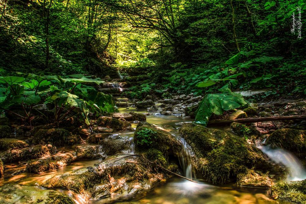 A running stream in Sinop, Turkey by Zak AlGurbawi