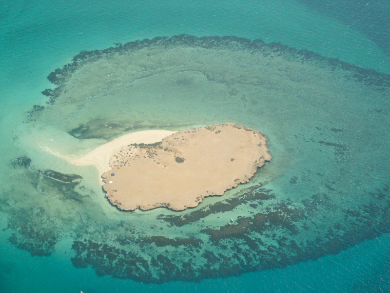 3916-Do-you-know-there-are-1300-islands-in-Saudi-Arabia-02.jpg
