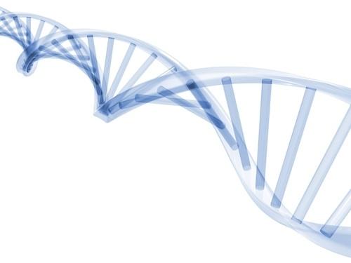 DNA_Strand_Small.jpg