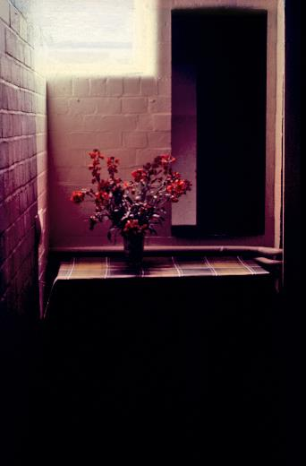 Wallflower Triptych  1979, 16mm film, 35mm slide, table, mirror, vase of wallflowers