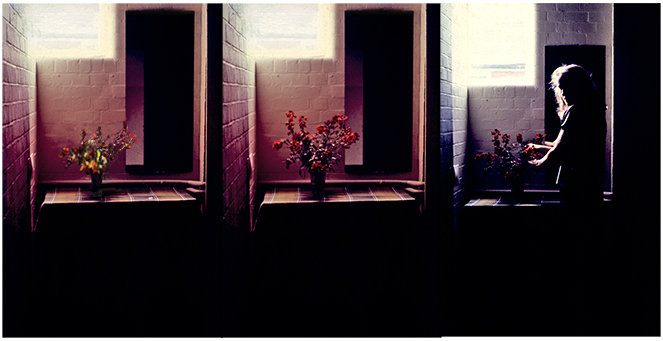 Wallflower Triptych 1979, installation -35mm slide-16mm projection