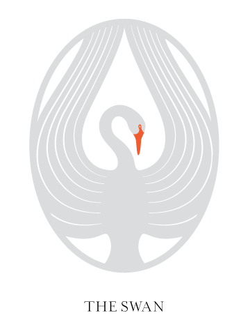 Swan_FINAL_color1.png