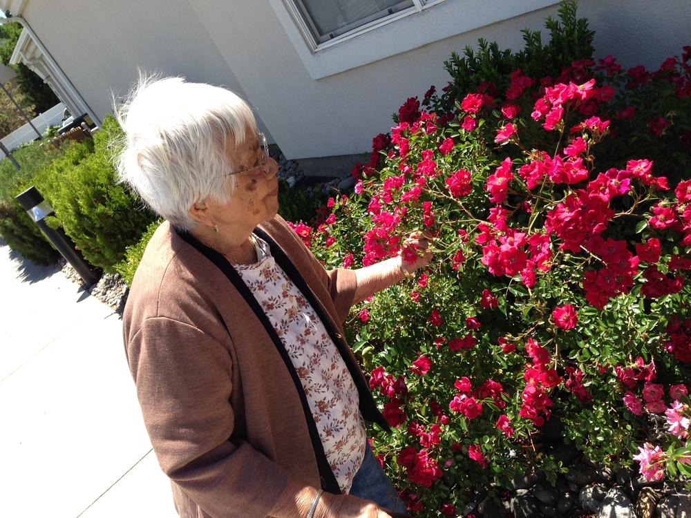 Grandma Suero